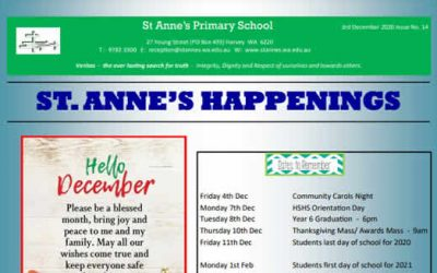 St Anne's Happenings Issue 14